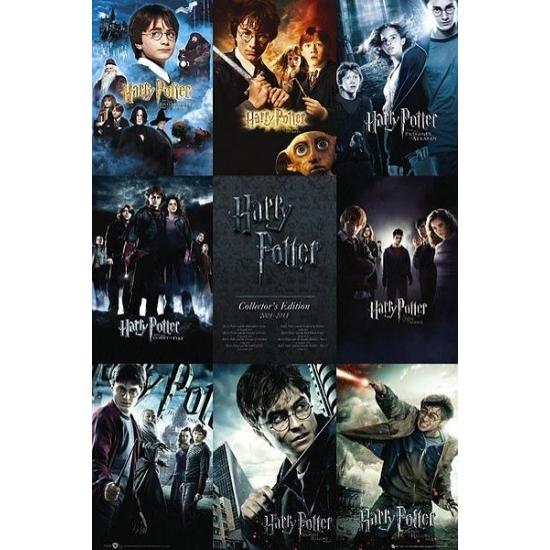 Poster Harry Potter Maxi 61 x 91 cm